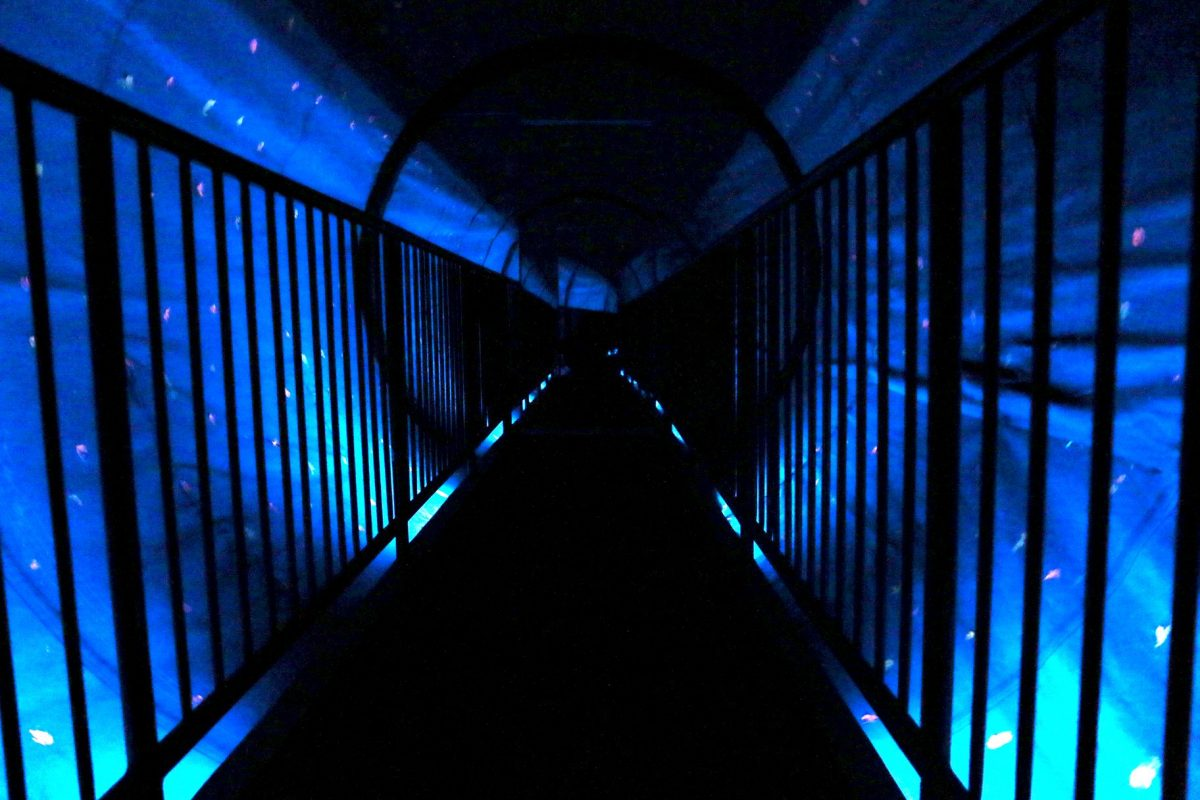 Vortex Tunnel How Does It Work Science Behind the Illusion - AAJoyland.com